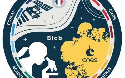 Zoom sur le blob pour les lycéens de Brocéliande !